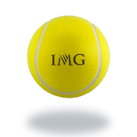 Personalized - Tennis Stress Ball