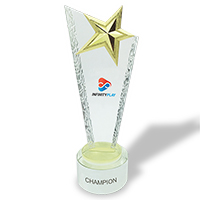 Personalized - Gold Star Trophy